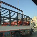 نقل اسطوانات الغاز على سيارة دينة بالأفلاج