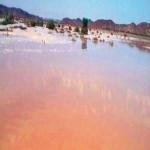 أمطار الأفلاج .. سيول بلا حوادث