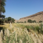 مناظر خلابة في محافظة الأفلاج لم تشاهدها من قبل