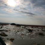 بالصور أمطار على شمال الأفلاج والغيل وستارة وحراضة