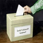 «متحدث الانتخابات البلدية»: صلاحيات واسعة للمجالس في مراقبة وتطوير الأداء