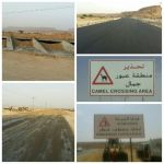 العمل على صيانة طريق الأفلاج الأحمر بعدد من المشاريع