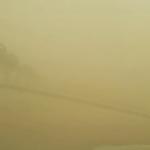 بالصور : عاصفة الأحمر تقتلع النخيل وأعمدة الإنارة والخيام