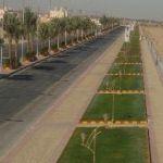 معاناة ساكني حي الملك فهد مع مطبات شارع الغروب