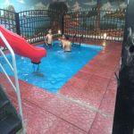 بالصور : إنسان الأفلاج في ختام فعاليات ( صيف إنسان ولا أروع )