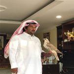 الصقار رميزان الصخابرة يحقق المركز الأول على كأس رئيس دولة الإمارات