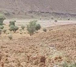 بالفيديو والصور : سيول وشلالات شعيب مرخ جنوب غرب الهدار