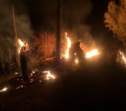مدني ستارة يخمد حريقاً في حراضة