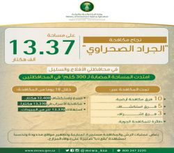"""""""البيئة"""" تنجح في مكافحة الجراد الصحراوي بـ """"الأفلاج"""" و""""السليل"""" على مساحة 13.3 ألف هكتار"""