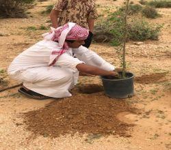 فريق تطوعي ستارة للمحافظة على الأشجار من الإحتطاب