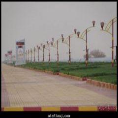 تفحيط واستعراض شبابي بالأسلحة وإطلاق نار في الهواء في حي الملك فهد بالمحافظة