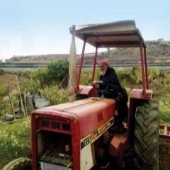 مسن تخطى المئة عام يعطي درسا للشباب في حب العمل...أصبح الجد الخامس في أسرته ويقود الحراثة الزراعية بنفسه ويرفض مساعدة أبنائه