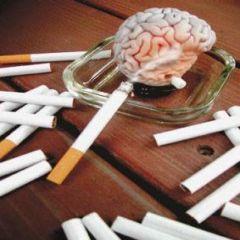 مركز مكافحة التدخين في الأفلاج يقيم عيادة للمدخنين في الحج