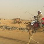 مواطن من نجران يصل للأفلاج على جمل بمناسبة شفاء الملك عبدالله