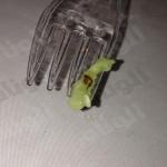 مواطن يتفاجأ بأرجل صراصير في مقبلات بمطعم شهير بالخرج