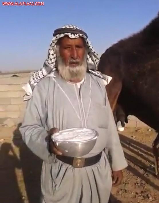 بالفيديو مسن يوصي بشرب حليب اﻹبل وتجنب المشروبات الغازية.. والصحة تحذر منه