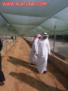 مدير عام هيئة الري والصرف يقف على مشروعات الأفلاج