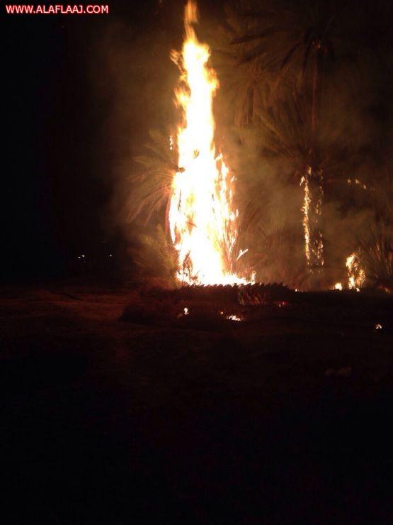 حريق يلتهم مزارع نخيل في الأحمر