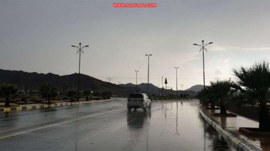 بالفيديو.. «زخات البرد» توقظ سكان عدة أحياء شرقي الرياض