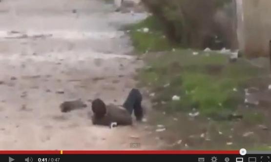 """بالفيديو.. استشهاد مراسل """"الجزيرة"""" في درعا بعد إطلاق الرصاص عليه"""