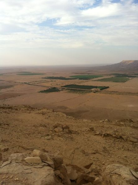 مزارعي الجويفا وانقطاعات الكهرباء المتكررة