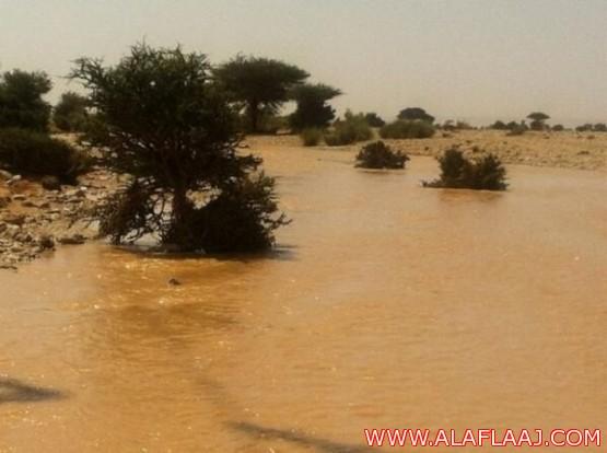 تقرير مصور لأمطار الهدار ليوم الخميس