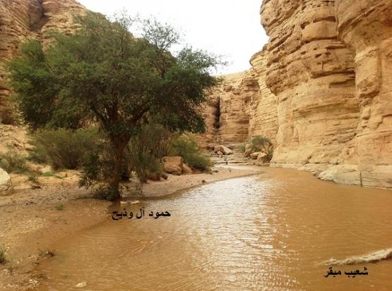بالصور .. أمطار متفرقة على مراكز محافظة الأفلاج